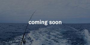 冬釣り部バナー